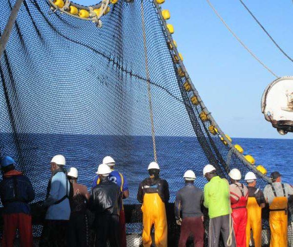 AENOR lanza una nueva web para impulsar el consumo responsable de atún