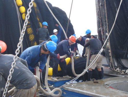 AENOR APR Atún de Pesca Responsable